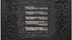 La grillade, matériaux divers, collage -  41x33 cm.