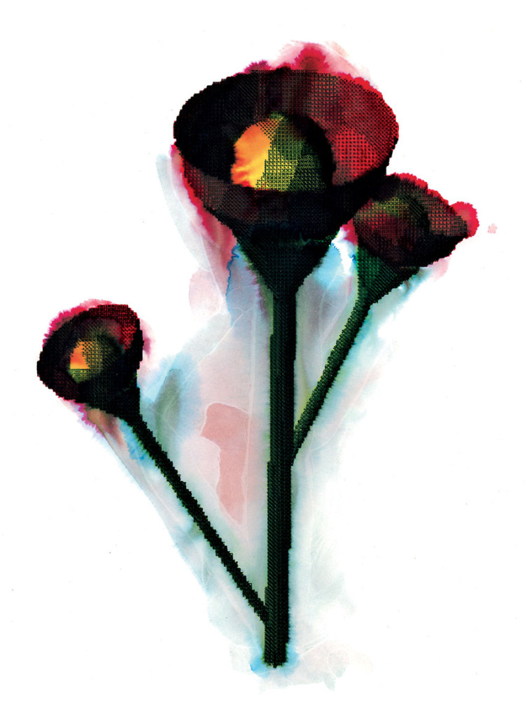RenduPeinture_3Dflower